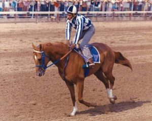 Talk Of The Track Secretariat And His Friend Charlie Davis Together Again At Last