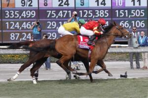 1 Race 7  Iridessa MG 4578