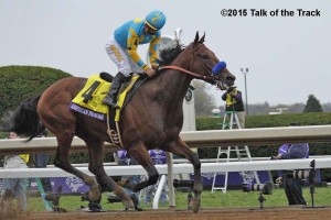 6_Race_11_American_Pharoah__MG_2953 (2)