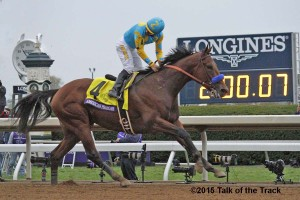 6a_Race_11_American_Pharoah__MG_2954 (2)